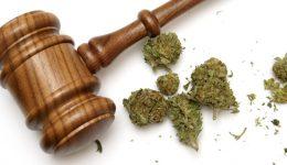 Possession of Marijuana in Philadelphia
