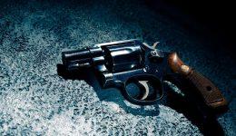 Gun Ownership (Handguns, Rifles & Shotguns) in New Jersey